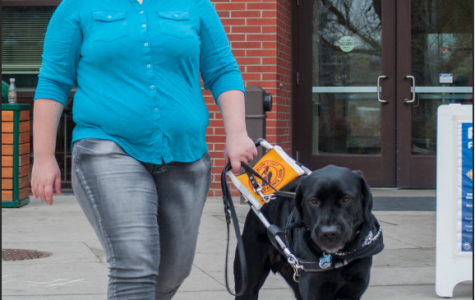 Service animals help students in need