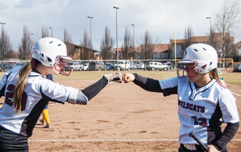 Softball steps in the box for big weekend