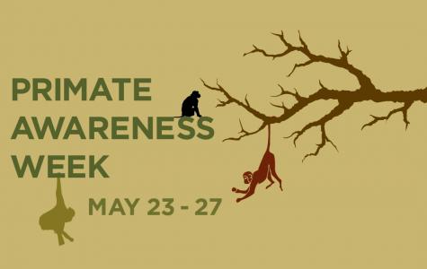 Primate Awareness Week