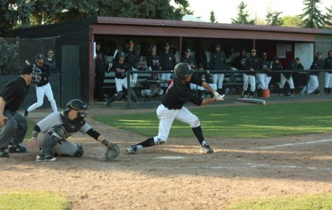 Levin ejected, Wildcats get swept by Wolves