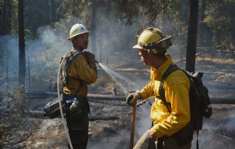 Historic fire season leads to millions in damage
