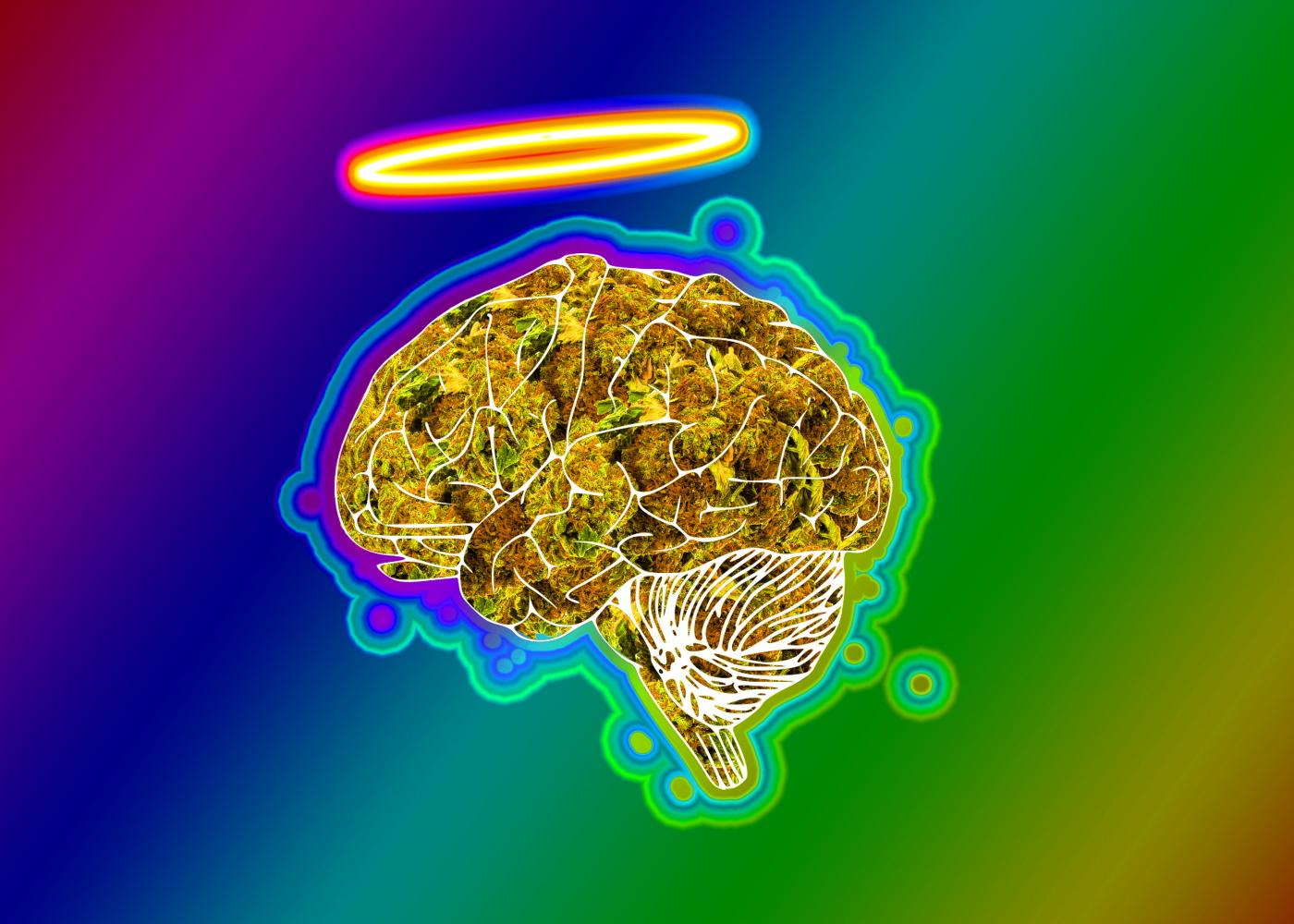 "Recent studies done by researchers at Bonn University in Germany suggest that small amounts of tetrahydrocannabinol (THC) can restore memory and learning functions in the brains of older subjects, similar to the levels of younger subjects. Previous studies have shown that THC exposure in younger and adolescent subjects reduces learning and memory ability. The results of this study reflect the opposite in older subjects. The study was completed using mice ranging in ages from 2 to 18 months. The older mice treated with small doses of THC showed similar cognitive function to the younger mice during testing. The researchers are planning a clinical trial on humans showing signs of cognitive decline. The results from the study done on mice are promising for those with Alzheimer's. THC decreases the production of amyloid beta, a protein that spikes in early stages of the disease, according to a study done at the University of South Florida. Billy Lauderdale, an employee at Cannabis Central in Ellensburg, has noticed an increase in the number of elderly customers. These customers are purchasing more cannabidiol (CBD) products than marijuana products including THC, according to Lauderdale. Lauderdale believes more marijuana research will ""help people understand there is more than one side"" to pot and it is not just used to get high. The older customers are utilizing the other parts of the plant. With more research on medical benefits Dan DeVries, manager at The Fire House in Ellensburg, said ""the stigma will go away,"" referring to the stereotypes surrounding pot users. ""We've been lied to for so long,"" DeVries said. The criminalization and stigmatization of pot goes back to before the Nixon administration, and DeVries believes the older generation is very prideful and stuck in their ways.  DeVries also believes the lack of research into medical marijuana has led to ""people not being able to get outside their circumstances,"" in addition to being somewhat narrow-minded. He also believes younger generations understand marijuana better than older generations. DeVries recognizes the older generation's lack of acceptance stems from the way they were raised, which was to believe pot is a highly addictive gateway drug. DeVries also called upon the media to continue to cover medical marijuana research. He believes if the media ""continues to publish the hell out of positive news"" regarding pot, the older generations could possibly be swayed to change their minds on medical marijuana."