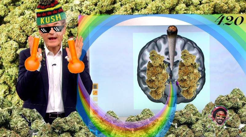 During+an+interview+with+Fox+and+Friends%2C+TV+personality+Dr.+Oz+surprisingly+came+out+strongly+in+favor+of+medical+marijuana+research.