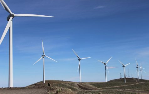 Wind farm hunting closes Nov. 30