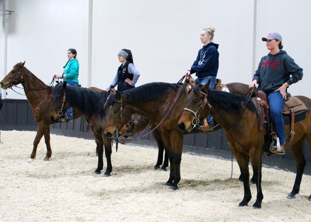 During western ride nights, the team will ride horses on the rail then line up at the end of the arena to do loops. Here is just a small group of the team watching a demonstration of the coming pattern.