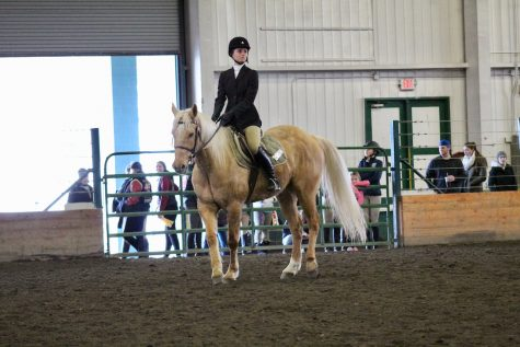 Equestrian team competes at Stanford