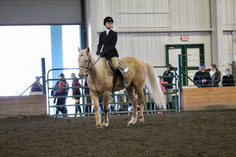 Sturgeon+rode+a+palomino+gelding+named+Ottis+in+the+class+for+regionals.+Regionals+was+held+at+the+show+that+UW+hosted+at+the+Monroe+fairgrounds+in+March.