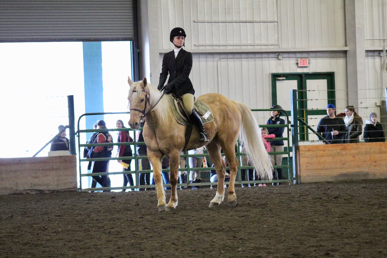 Sturgeon rode a palomino gelding named Ottis in the class for regionals. Regionals was held at the show that UW hosted at the Monroe fairgrounds in March.