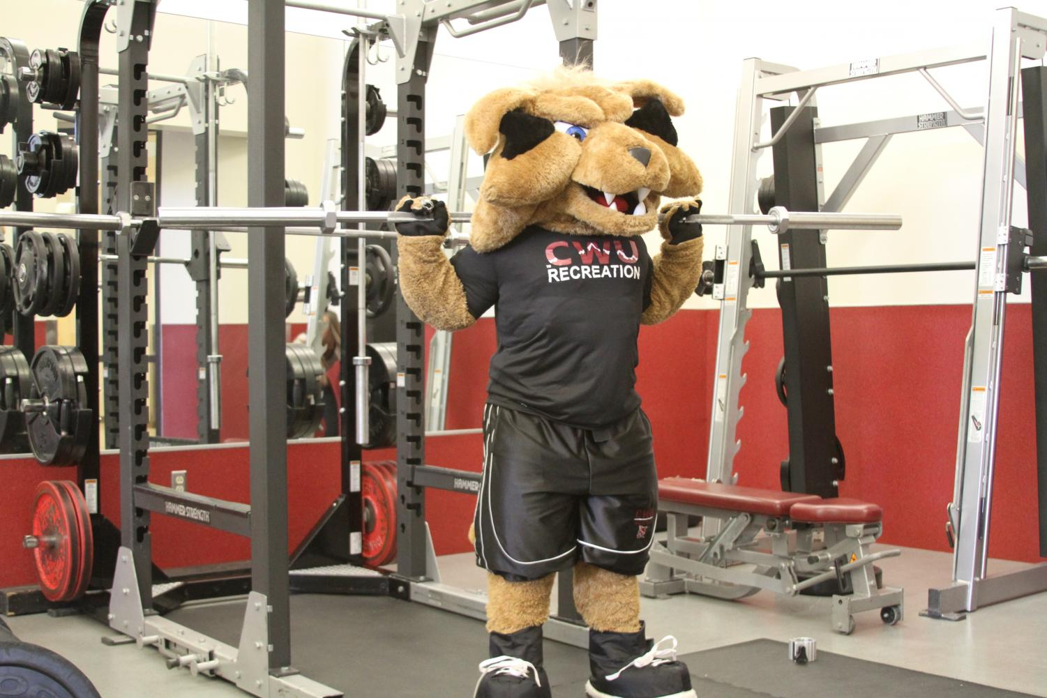 The Iron Cat Games started April 1 and will run through May 13. Students will compete in high intensity exercises for the chance to win prizes.
