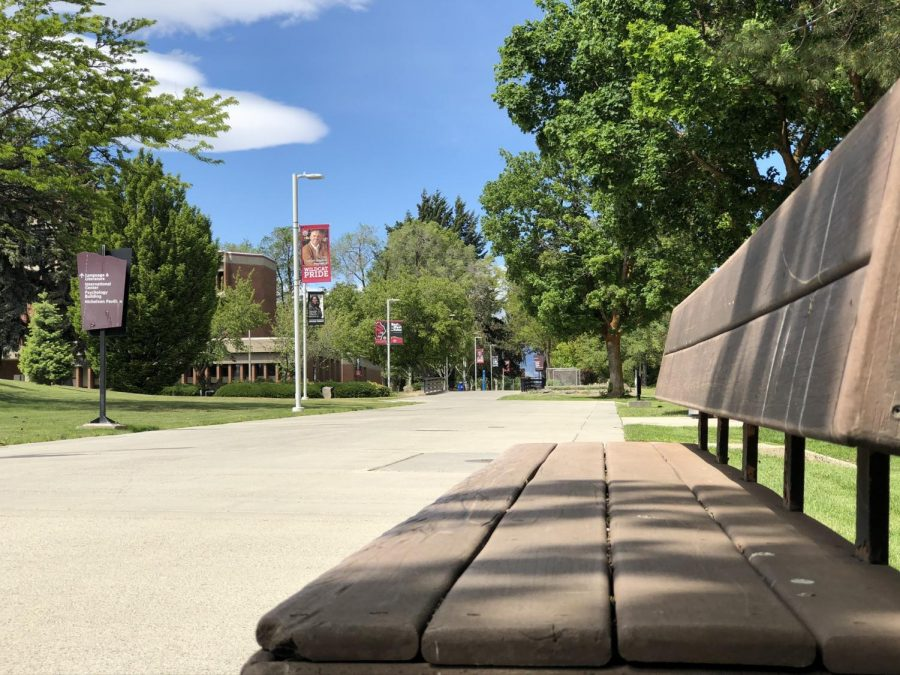The main walkways through campus, usually occupied by students, were empty all quarter due to the campus shutdown caused by COVID-19. Most buildings were closed as well.