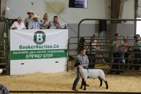 A 4-H boy smiles at the crowd bidding on his market goat at the 2019 Kittitas County Fair.